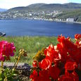 Hammerfest from the top